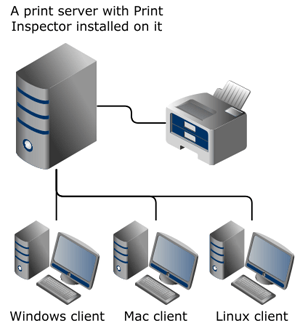 Diagram: Print Inspector installed on a single print server in a small network