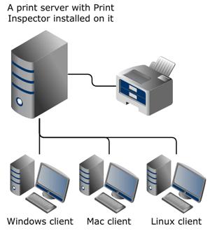 Print Inspector setup diagram